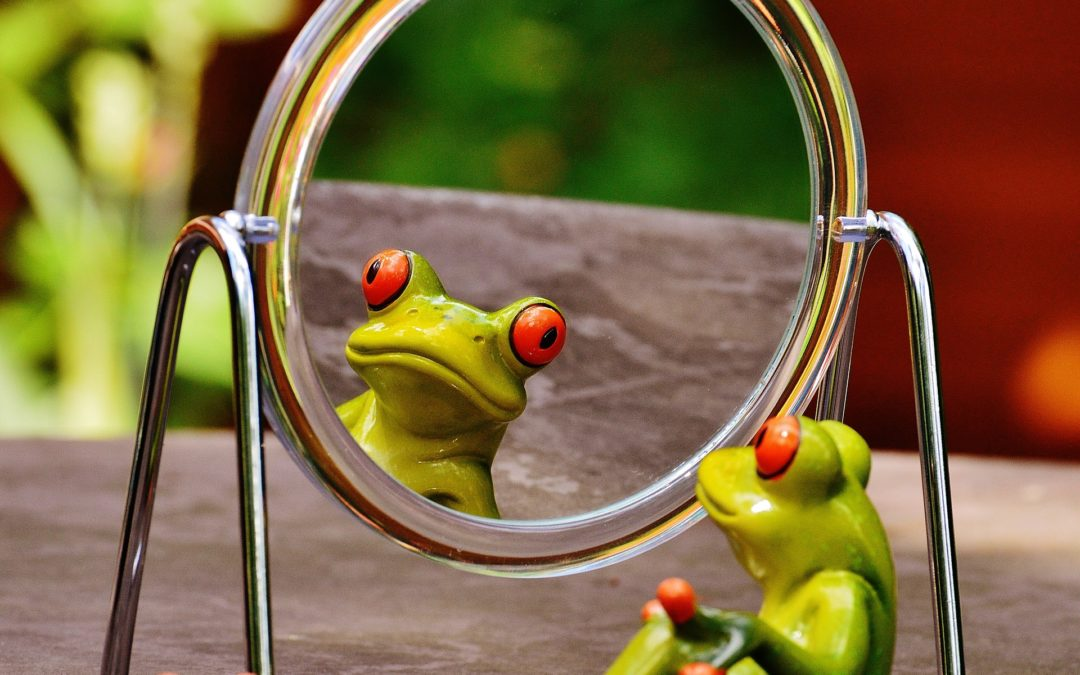 La grenouille et la PME
